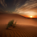 Image_500px__Photo_Desert_Light_by_Ahmed_Altoqi